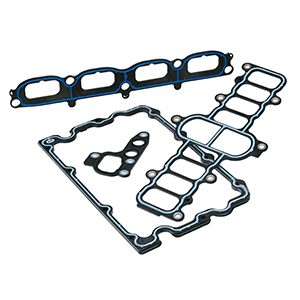 Overmolded Carrier Gaskets