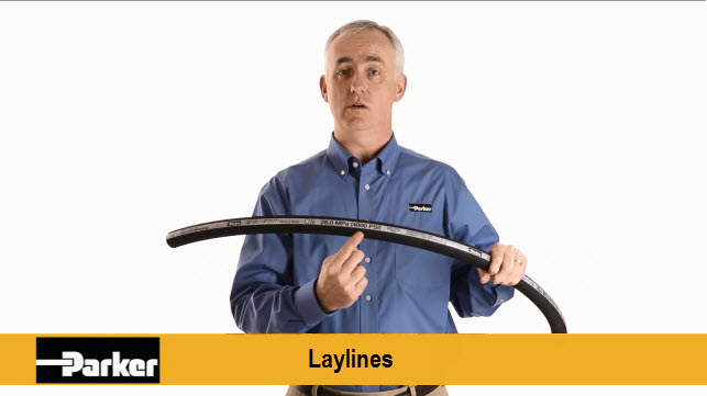 Play Hose Laylines Video